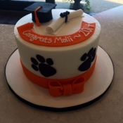 Wildcats themed cake