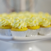 Lemon Mini Cupcake