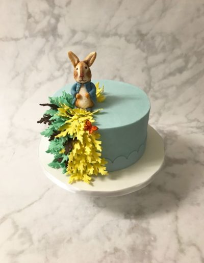 OneBelleBakery-CakeForParties27
